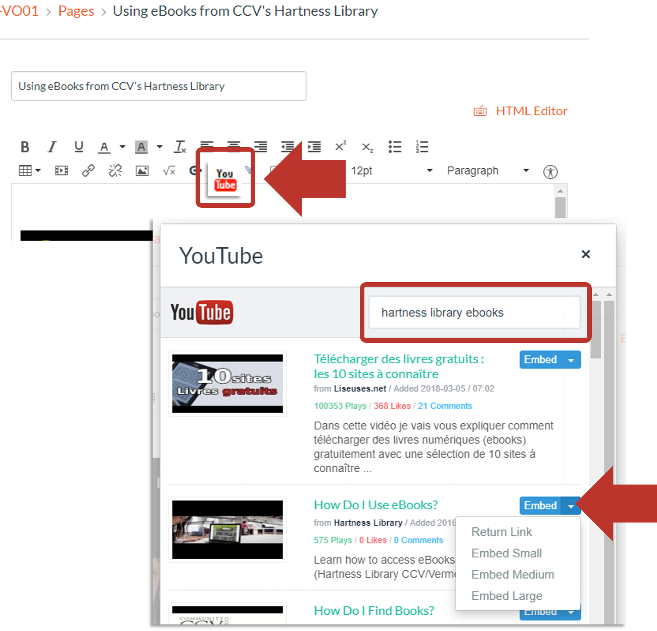add videos from rich text editor in Canvas
