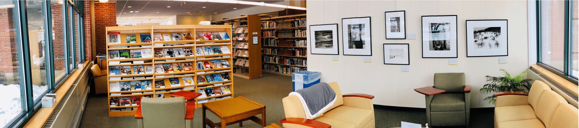 visit the library galleries